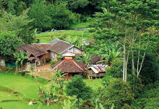 Village near Mount Halimun Salak National Park, West Java, Indonesia (Photo by Aulia Erlangga/CIFOR)