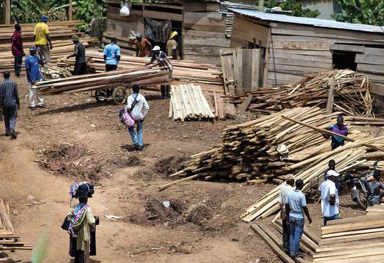Montée Parc Wood Market, Yaoundé, Cameroon (Photo by Ollivier Girard/CIFOR)